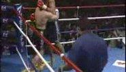 Mirko CroCop vs Peter Aerts  част 2