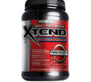 Scivation - Xtend Endurance / 1170 gr.