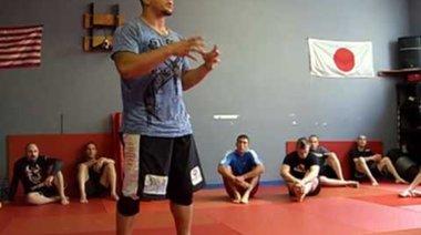 Frank Mir за позицията в MMA