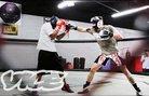 MMA в Ню Мексико