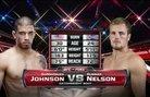 Gunnar Nelson vs. DaMarques Johnson