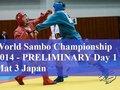 Световно първенство по самбо 2014 - финали ден 3