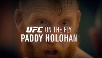 Fight Night Dublin: Paddy Holohan