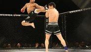 Акробатични удари с крак