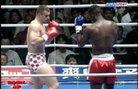 Remy Bonjasky срещу Mirko CroCop