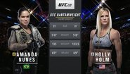 Amanda Nunes vs Holly Holm