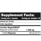 Amix - Creatine MagnaPOWER® / 120 caps.