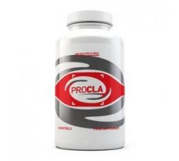 Bodyraise - ProCLA / 120 softgels Хранителни добавки, Отслабване, CLA