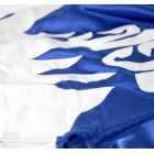 Dominator - Муай тай шорти / Синьо-бяло