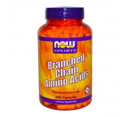 NOW - Branched Chain Amino Acids / 240caps. Хранителни добавки, Аминокиселини, Разклонена верига (BCAA)