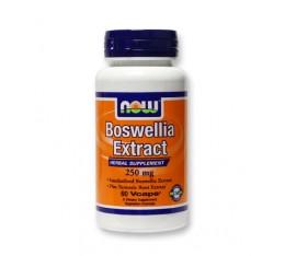 NOW - Boswellia Extract 260mg. / 60 VCaps. Хранителни добавки, На билкова основа