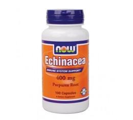 NOW - Echinacea 400mg. / 100 Caps. Хранителни добавки, На билкова основа