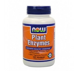 NOW - Plant Enzymes / 120 VCaps.