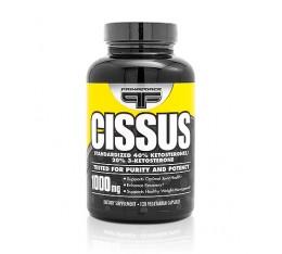 Primaforce - Cissus / 120 caps Хранителни добавки, За стави и сухожилия