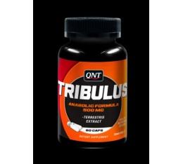 QNT - Tribulus Terrestris / 60 caps. Хранителни добавки, Стимулатори за мъже