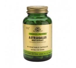 Solgar - Astragalus Root Extract / 60 caps. На билкова основа