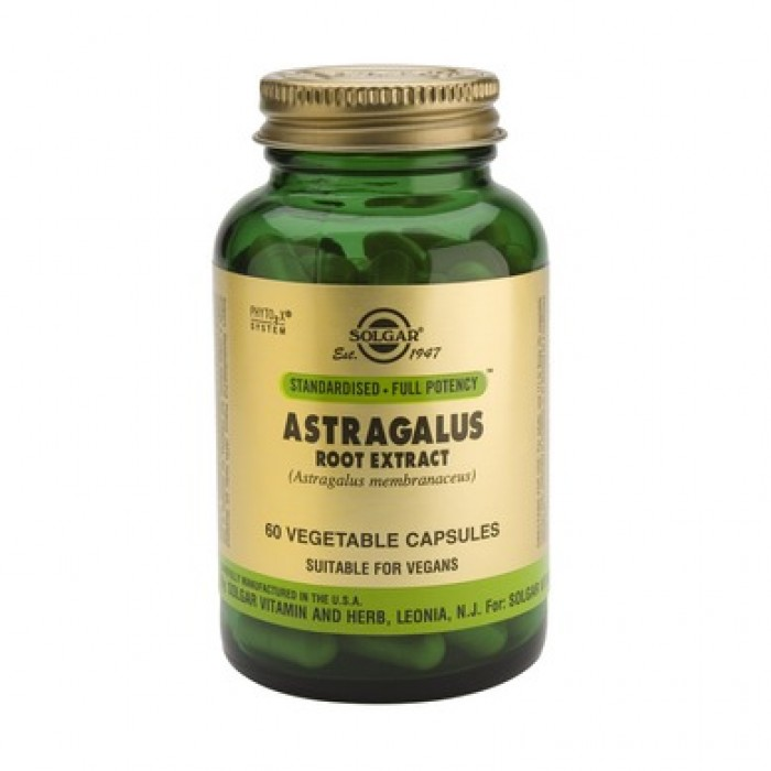Solgar - Astragalus Root Extract / 60 caps.​