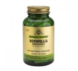 Solgar - Boswellia Resin Extract / 60 caps. На билкова основа