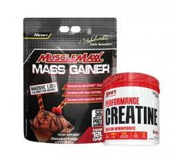 STACK Маса - Muscle Maxx Gainer + Creatine Хранителни добавки, Качване на мускулна маса, Гейнъри за покачване на тегло, Гейнъри, СТАКОВЕ