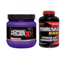 STACK Сила - Tribuvar 1000 + Horse Power® X Хранителни добавки, Сила и възстановяване, Стимулатори за мъже, СТАКОВЕ, Хранителни добавки на промоция