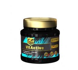 Z Konzept - VitActive