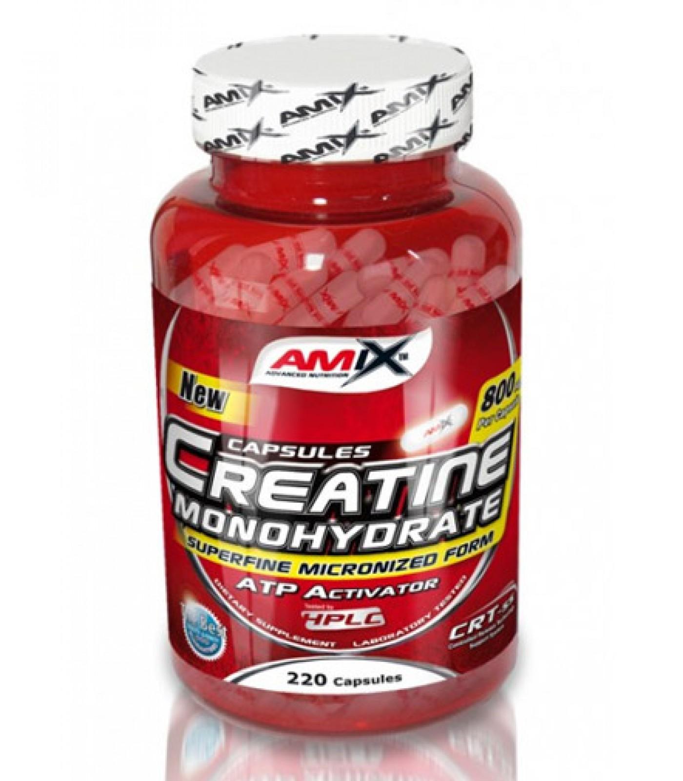 Amix - Creatine Monohydrate / 500 caps.