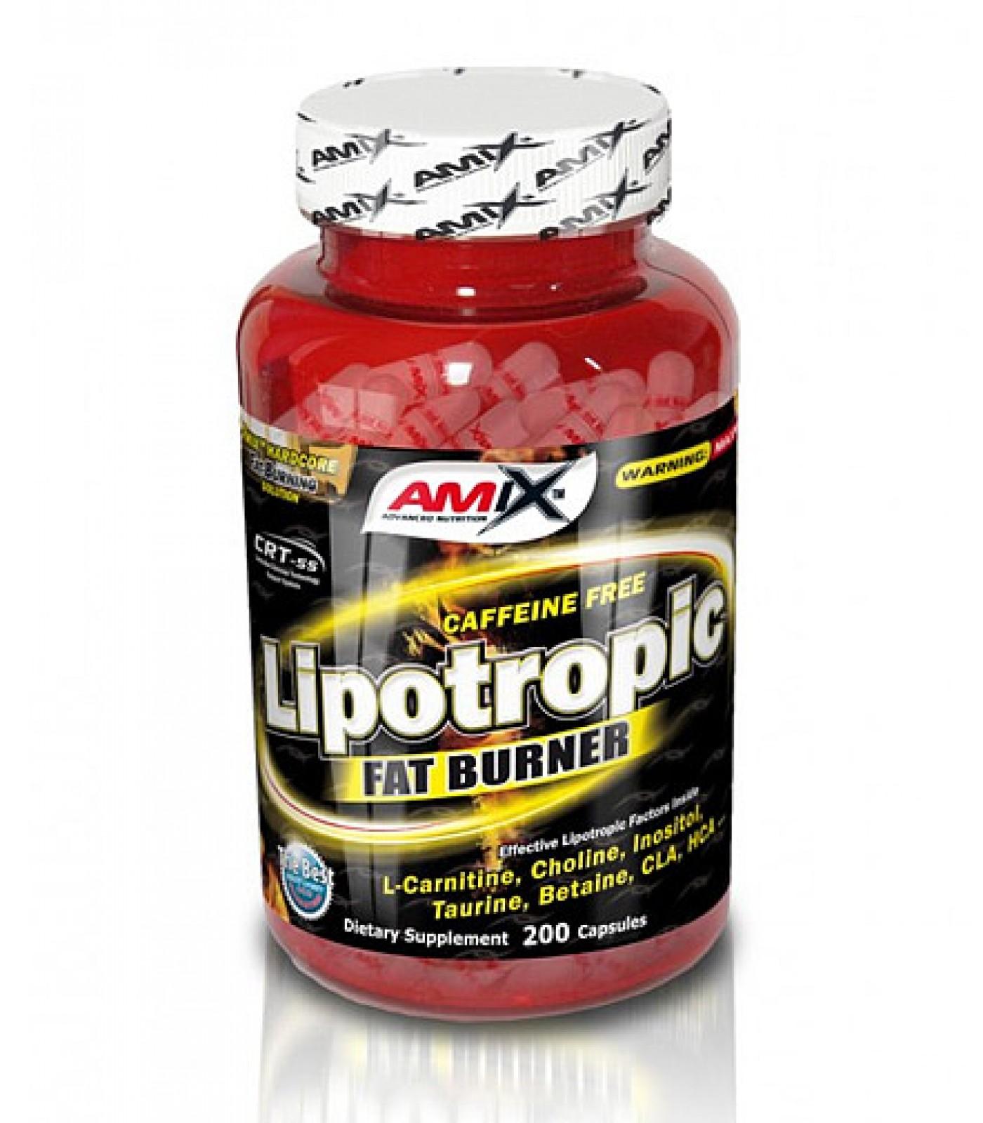 Amix - Lipotropic Fat Burner / 200caps.