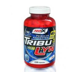 Amix - TribuLyn ™ 40% / 220caps.