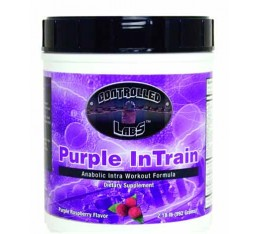 Controlled Labs - Purple InTrain / 992gr.