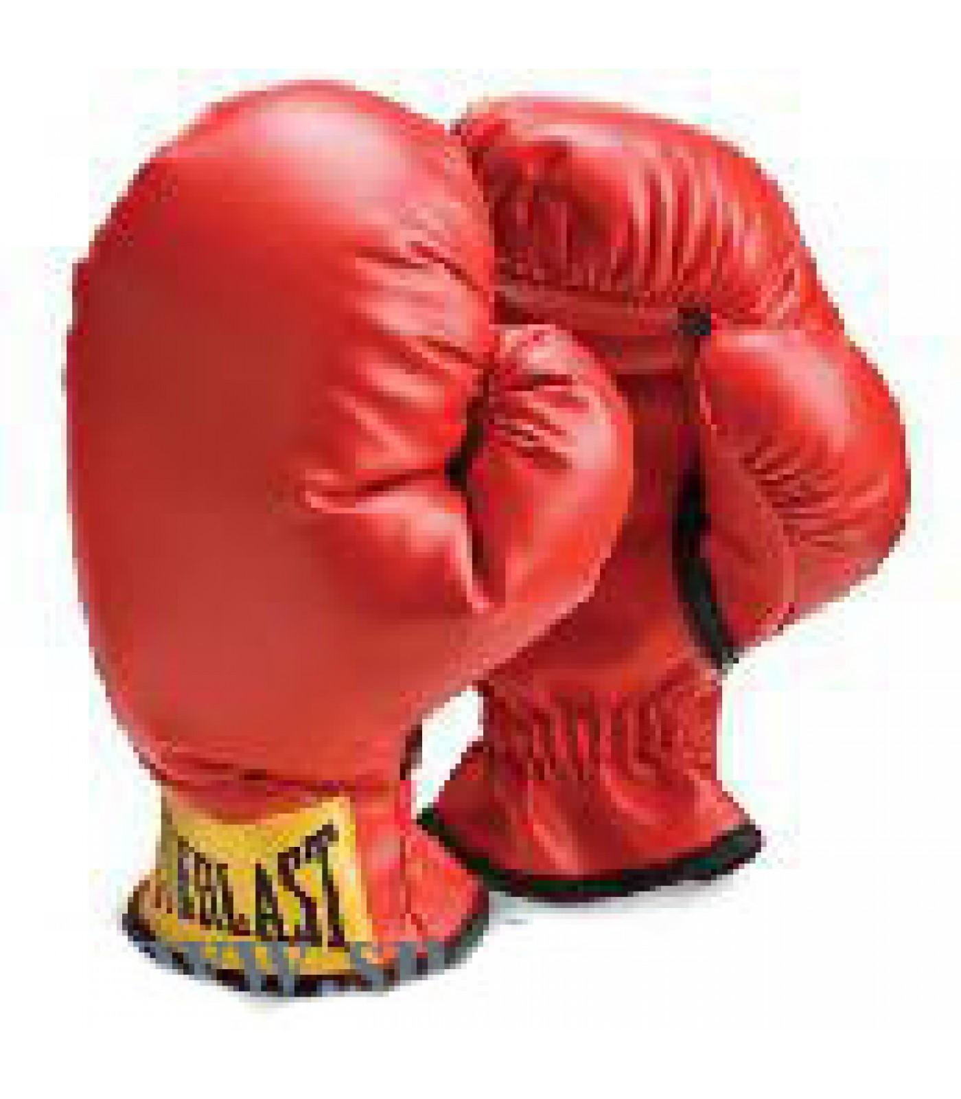 Everlast - Боксови ръкавици за деца
