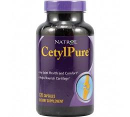 Natrol - CetylPure / 120 caps Хранителни добавки, За стави и сухожилия