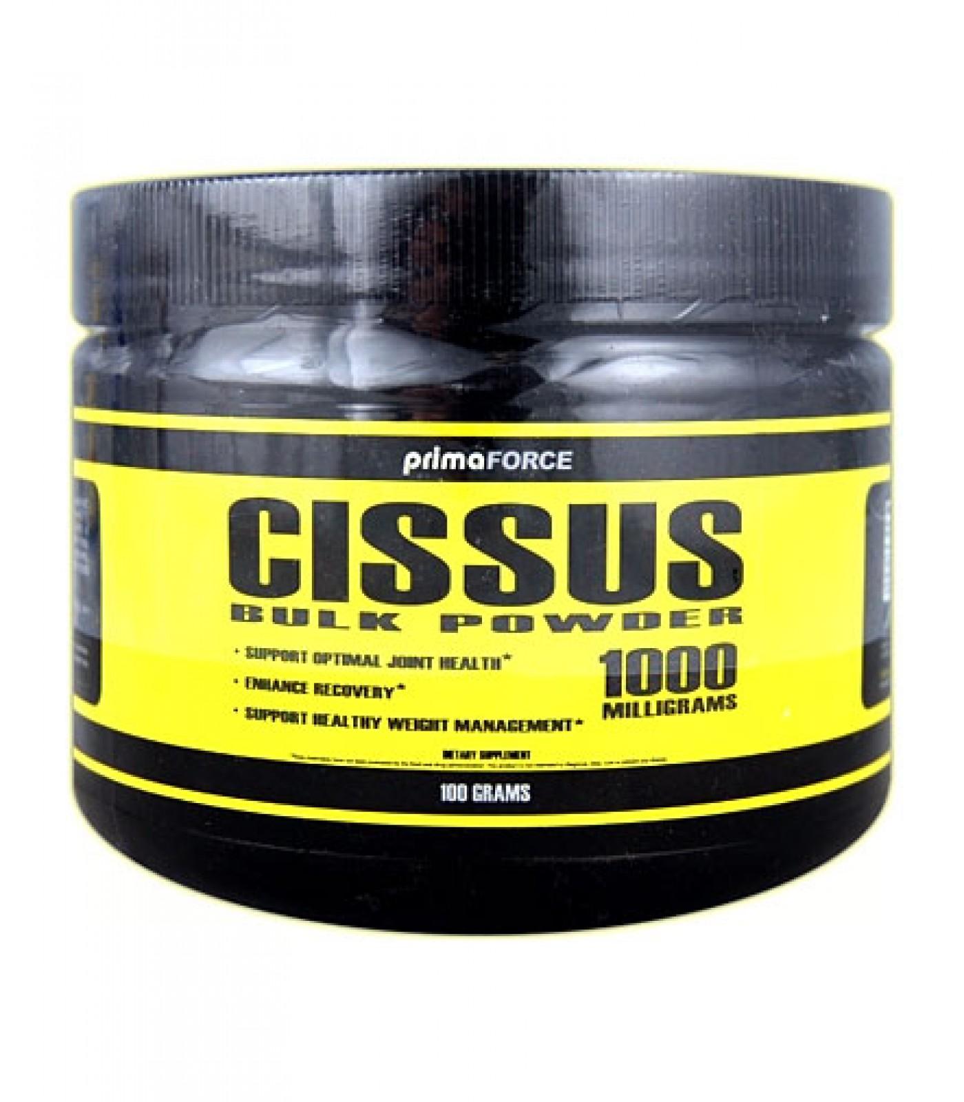 Primaforce - Cissus / 100 gr