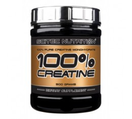 Scitec - 100% Creatine / 300 gr.