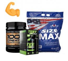 Стак за мускулна маса и сила - тестостеронов бустър + гейнър + креатин Хранителни добавки, Тестостерон стимулатори, Гейнъри за покачване на тегло, Креатин Монохидрат, СТАКОВЕ, Хранителни добавки на промоция