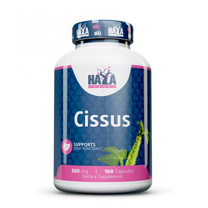 Haya Labs - Cissus 500mg. / 100 Caps