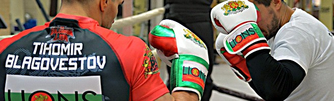 Lions Boxing